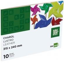 bloco papel lustro 10 fls